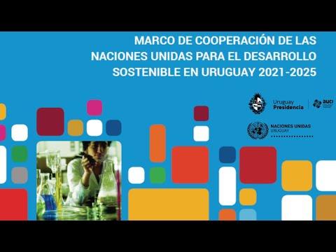 Marco de Cooperación 2021-2025